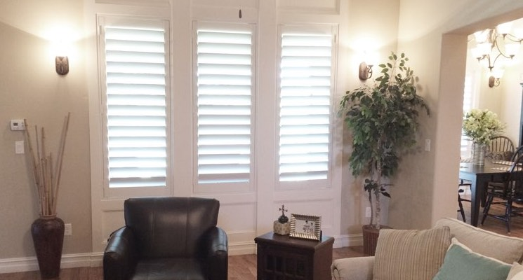 Gainesville parlor white shutters
